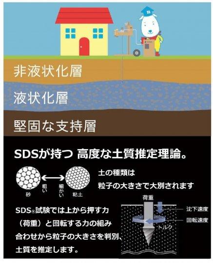 SDS試験